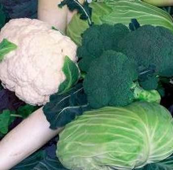 Bu sebzeler direnci arttırıyor