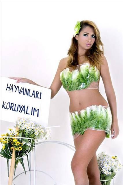Nilay Dorsa