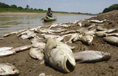Burası ölüm nehri !