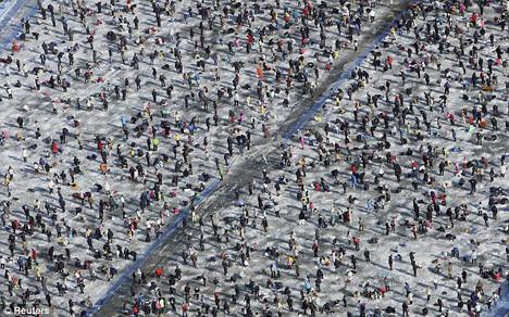 Buz üstünde festival