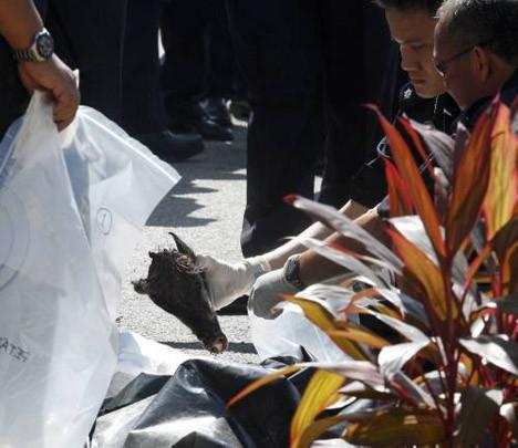 Camiye domuz başı bıraktılar
