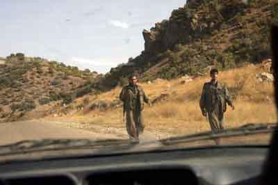 Hainler Irakta elini kolunu sallaya sallaya geziyor