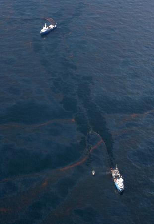 Okyanustaki petrol felaketi