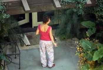 Britney Spears evi böyle temizledi