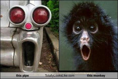 Ünlü benzerlikler
