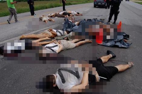 15 cesedi otoyola attılar !