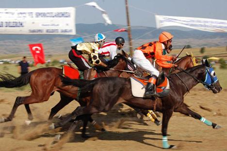 Yarışta düşen at, feci şekilde can verdi