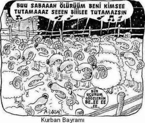 Karikatürler ile kurban bayramı