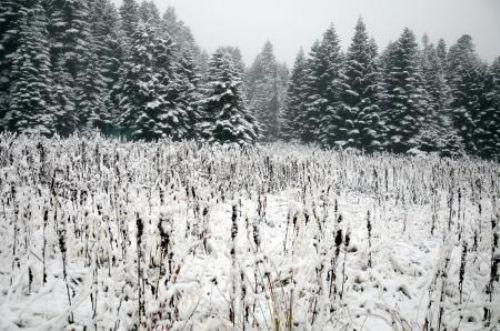 Marmaraya mevsimin ilk karı düştü