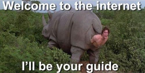 İnternetten seçmeler
