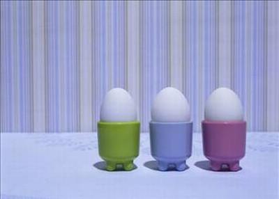 Yumurta hakkında bilinmeyenler