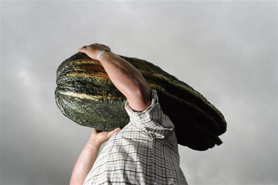 Dev sebzeler şaşırttı