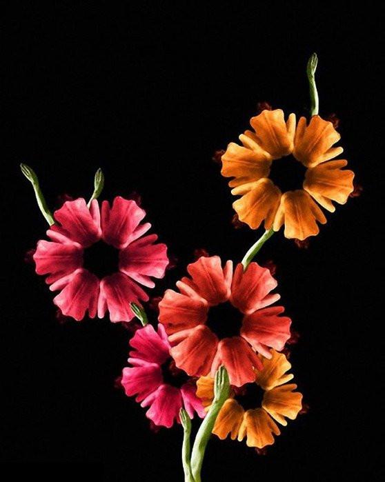 Bu çiçekler sizi hayrete düşürecek