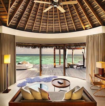 Palmiye üzerindeki cennet