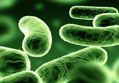 Bakterileri durduracak antibiyotik kalmayabilir