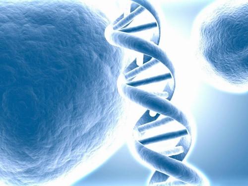 Bir gen iki çay kaşığı zeka demek