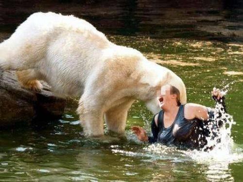 Hayvanların insanlara saldırdığı anlar