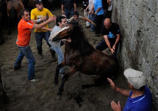 İspanya'da 400 yıllık geleneğe tepki var