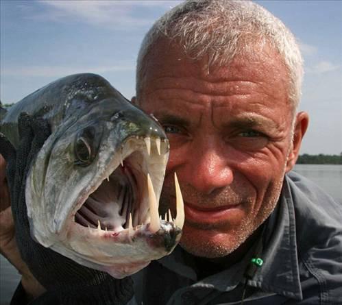 Nehirdeki garip yaratıklar