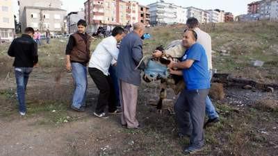 İstanbulda kurban kesim manzaraları