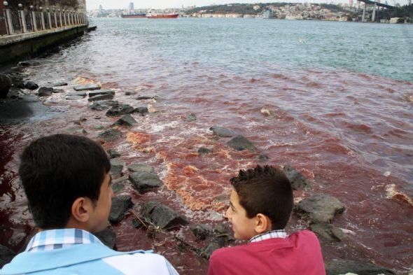 İstanbul Boğazı kan gölüne döndü