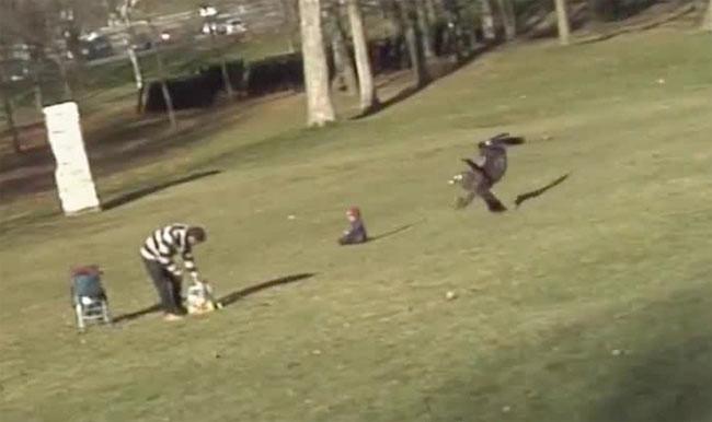 Kartal çocuğu kaçırmaya kalktı