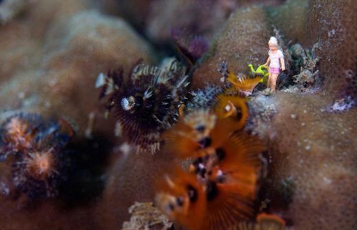 Denizler altında neler oluyor neler