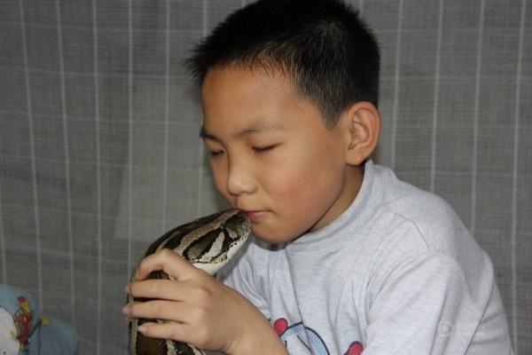 13 yaşındaki çocuk dev pitona sarılıp uyuyor