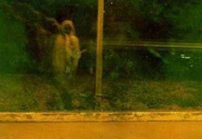 En meşhur hayalet fotoğrafları