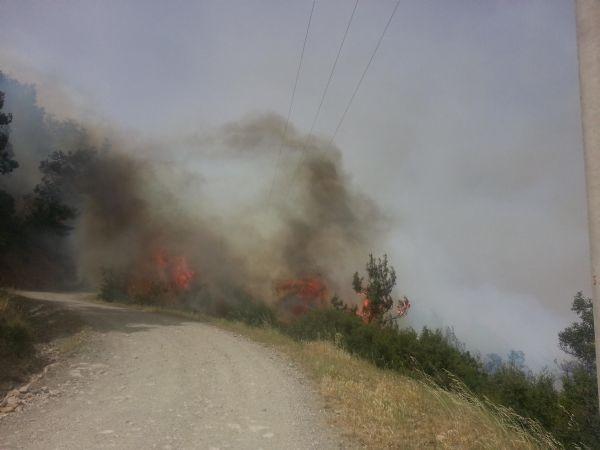 Manisa - İzmir arasında yangın!