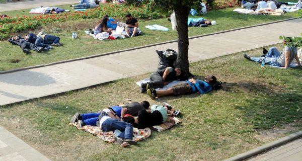 Gezi Parkında yiyecek duvarı