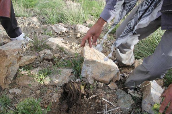 PKKlılara ait toplu mezar iddiası