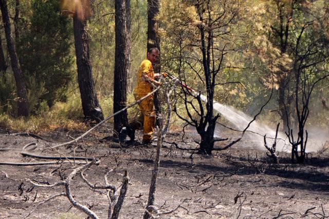 Beykozda orman yangını