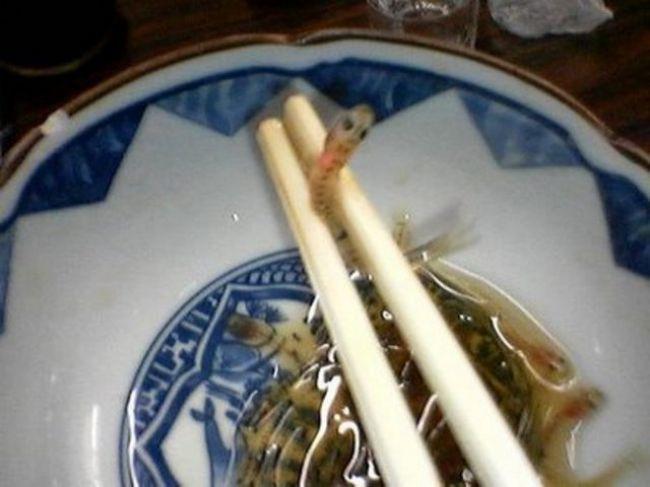 Dünyanın en tuhaf yemekleri