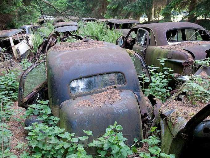 Bu otomobillerin sırrı ne?