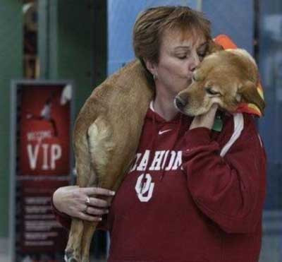 Bu köpek insan gibi yürüyor!