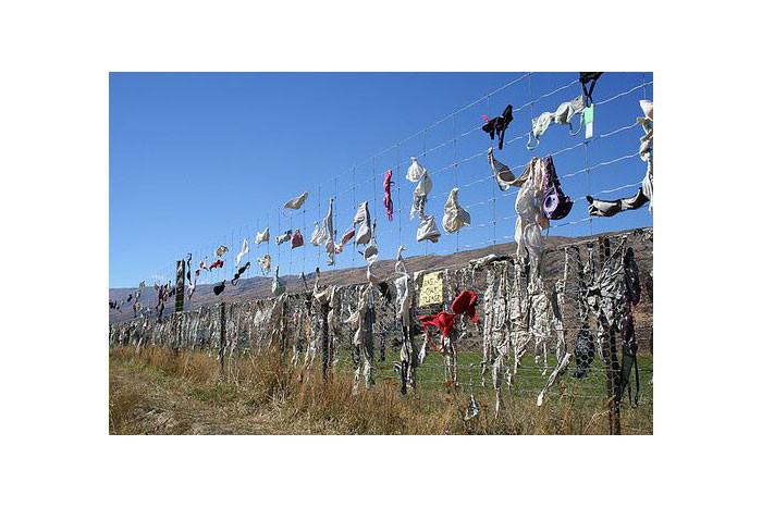 Sutyen çitini hiç duydunuz mu?