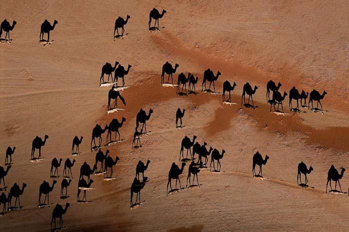 Afrikanın olağanüstü güzellikleri