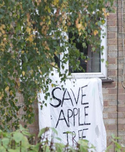 Elma ağacı için savaş veriyor