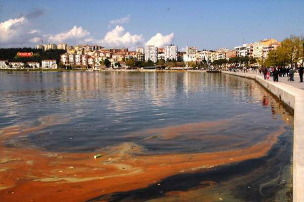 Arıtma tesisi yok, Çanakkale Boğazı kirleniyor