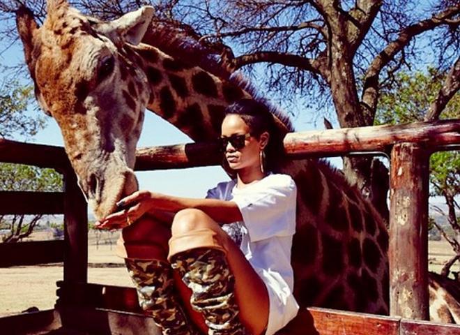 Rihanna hayvanat bahçesinde