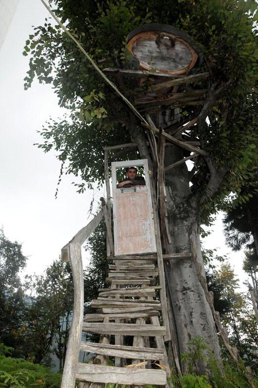 Ağaca kapı taktı