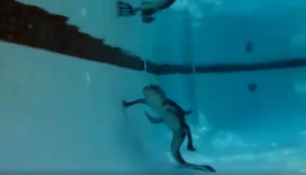 Havuza giren timsah nasıl kurtarılır