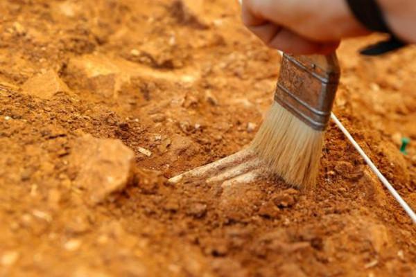 İnsanoğlunun 400 bin yıllık DNAsı bulundu