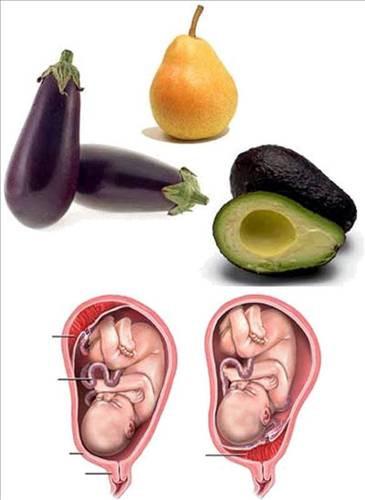 Hangi meyve hangi organa benziyor?