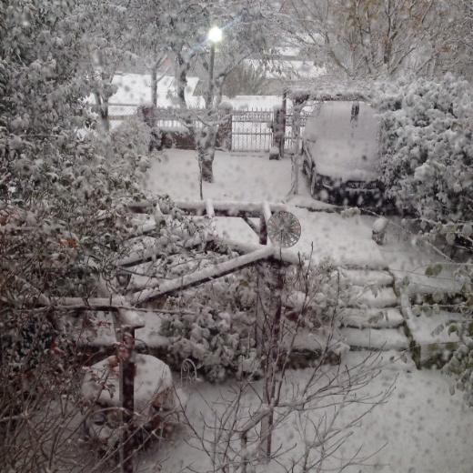 Ünlülerin karla ilk sınavı