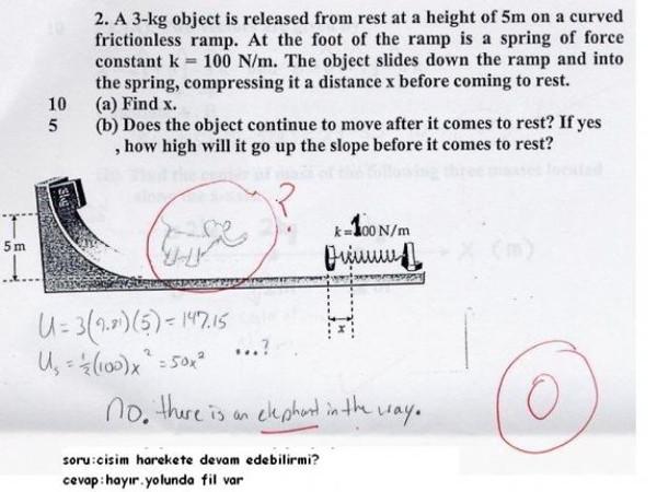 Bu cevaplar sizi güldürecek!