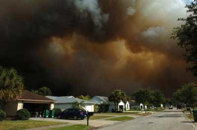 Florida orman yangını