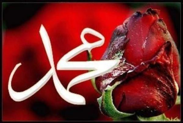 Hz. Muhammedin davet yolunda çektiği sıkıntılar