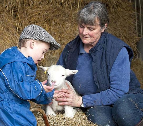 Dünyanın en küçük çobanı